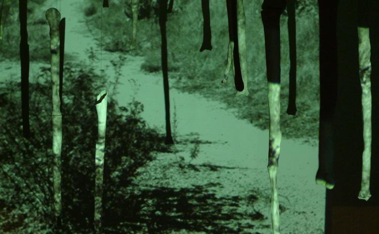 docpicinstallationviewforweb3.jpg